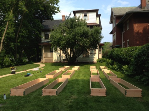 Garden boxes service project